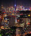 Beautiful Tokyo Skyline From The Ritz-Carlton-TRFlickr.jpg